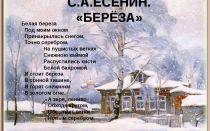 Стихи о зиме: с. а. есенин «берёза»