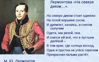"""Стихотворение м. ю. лермонтова """"на севере диком…"""""""